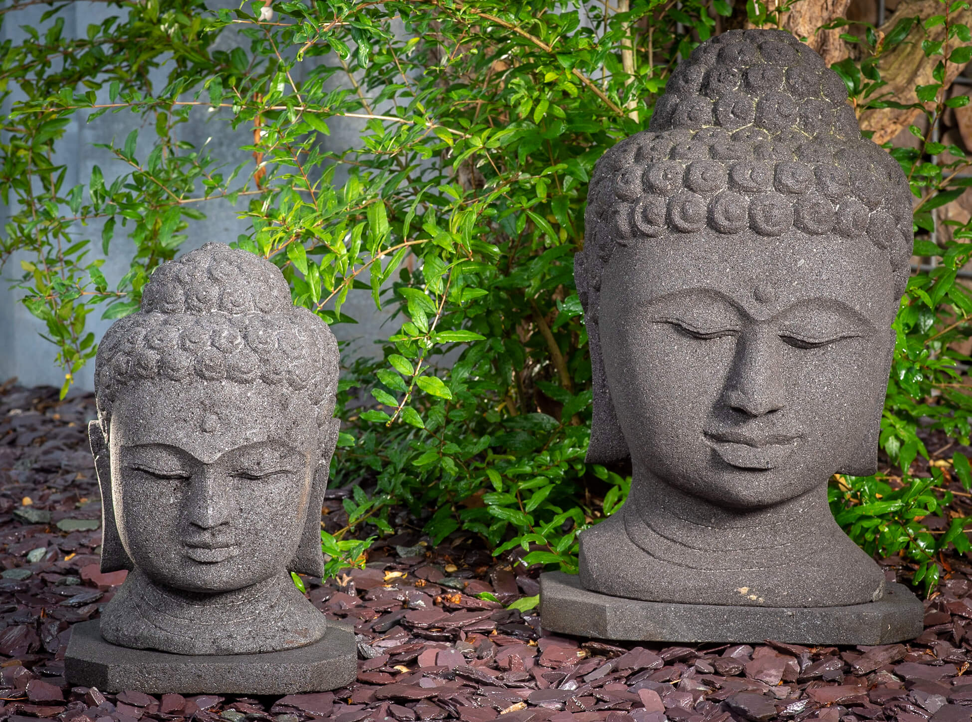 Indischer Buddhakopf